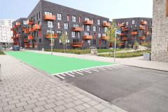 3.-Reibeplastik-Groningen